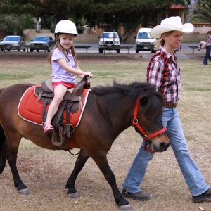 Animal Farms / Ponies