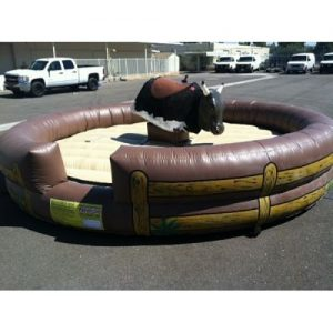 Mechanical Bull / Surfboard